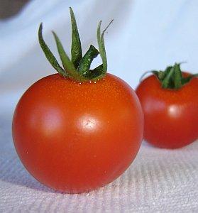 pomodorinipromopiano-piccola