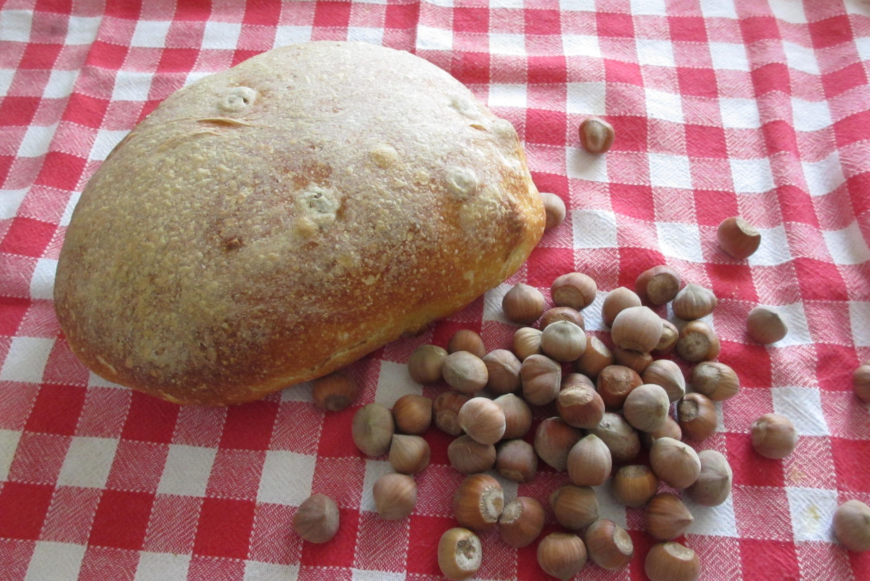 Tutti gli ingredienti che ci servono per il nostro pane fatto in casa